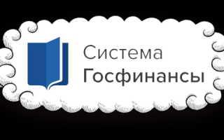 Личный кабинет системы Госфинансов: регистрация, авторизация и особенности взаимодействия