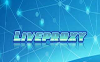 Личный кабинет компании Liveproxy: инструкция по авторизации, преимущества аккаунта