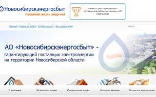 Личный кабинет энергосбытовой компании Новосибирскэнергосбыт