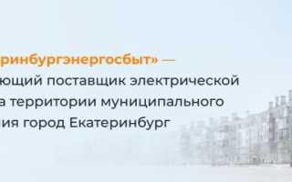 Особенности работы личного кабинета АО «ЕЭнС» (eens.ru)