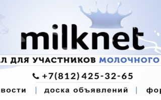Личный кабинет Милк.нет: инструкция по регистрации, возможности аккаунта