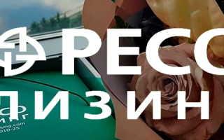 ООО «РЕСО-Лизинг»: регистрация и возможности личного кабинета