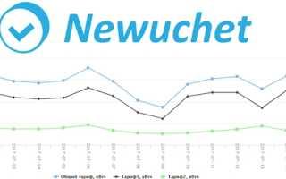Портал newuchet.ru: регистрация и возможности личного кабинета