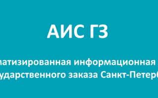 Регистрация и вход в личный кабинет АИСГЗ Новая платформа
