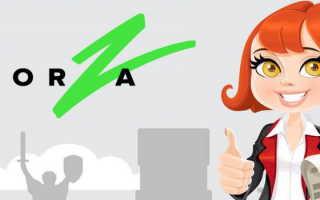 Личный кабинет Forza Credit: особенности использования