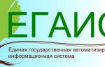 Личный кабинет ЕГАИС лес: регистрация и функции