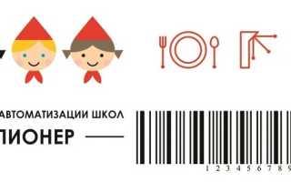 Личный кабинет Пионер.еду28.ру: инструкция для входа, функции аккаунта