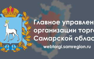 Личный кабинет ВебТорги СамРегион: регистрация, авторизация и особенности использования сервиса