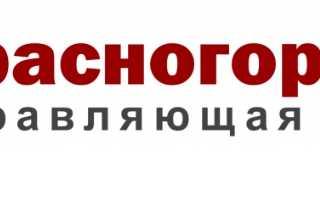 Обзор личного кабинета «Красногорье-ДЭЗ»