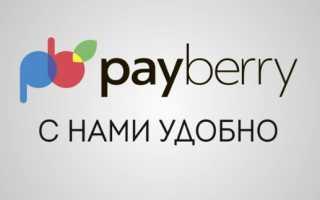 Личный кабинет Payberry: алгоритм авторизации, инструкция для выполнения платежей онлайн