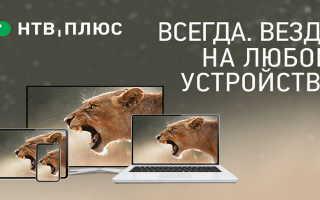НТВ-Плюс: вход в личный кабинет, официальный сайт ntvplus.ru