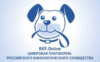 RKF.Online – регистрация на сайте, вход в личный кабинет