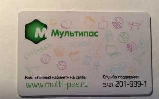 Мультипас – регистрация в системе, вход в личный кабинет