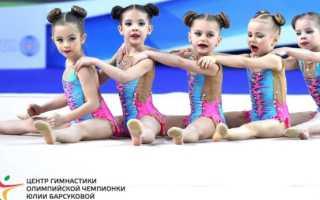 Центр гимнастики олимпийской чемпионки Юлии Барсуковой – регистрация и вход в личный кабинет