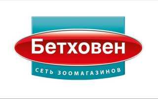 Официальный сайт Бетховен: регистрация и вход в личный кабинет онлайн