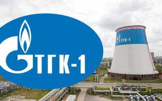 Личный кабинет компании ПАО «ТГК-1»: авторизация и возможности