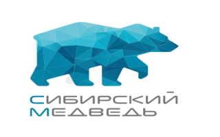 Личный кабинет провайдера Сибирский медведь – регистрация, вход, возможности
