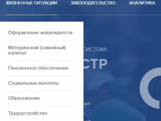 sfri.ru функции