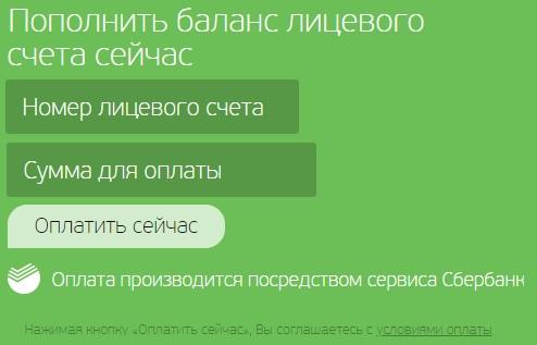 зеленая точка оплата