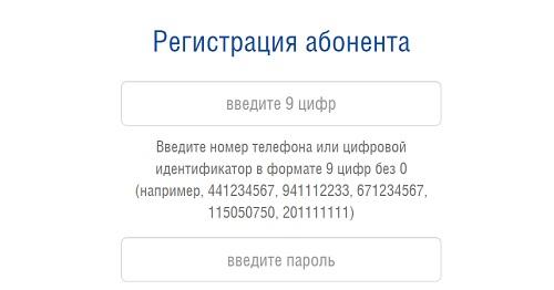 регистрация ит