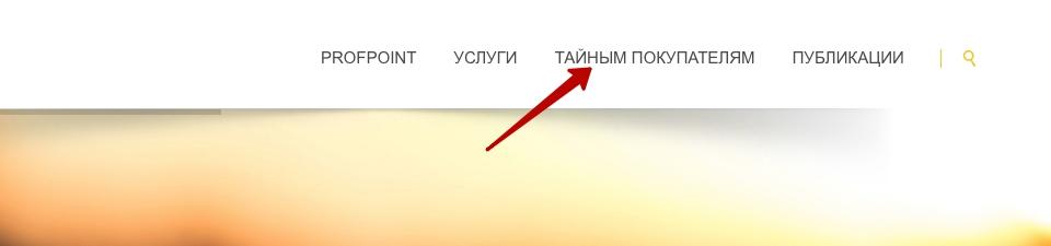 Регистрация в Профпоинт