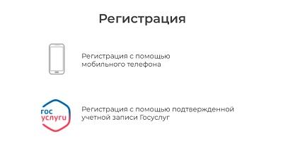 выбор способа регистрации в бнпф